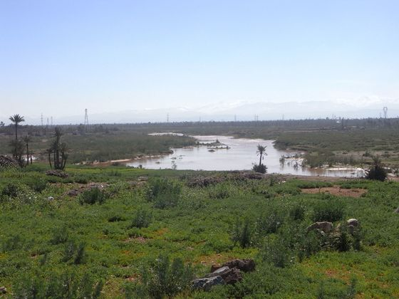 Marokko Flusstal 1
