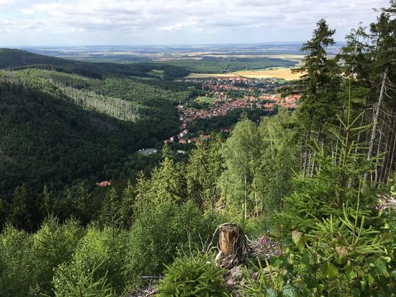 Wandern im Harz 1