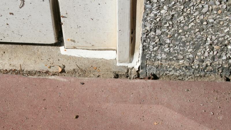 Lasius sp. niger 03 verwaist Eingang 02 draußen zum Haus